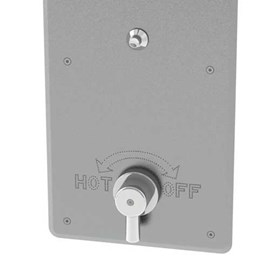 Option: Temperature/Pressure Mixing Valve with Rear Mount Lever Handle & Metering Valve in Riser
