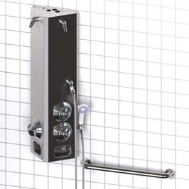 Handicap (Non-ADA) Two Station Surface Mount Stainless Steel Apex Shower with Handheld