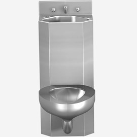 "15"" Toilet-Lavatory Comby Replacement"